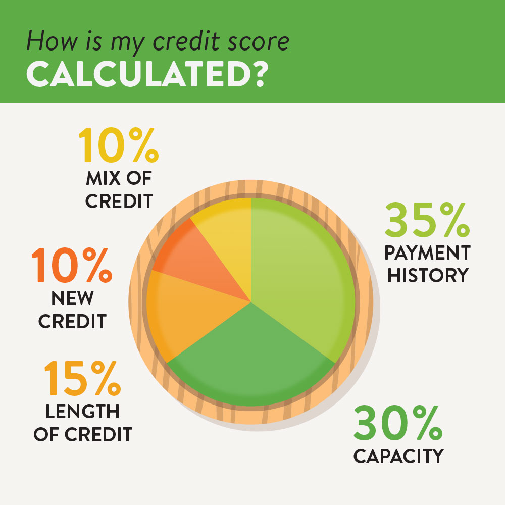 A pie chart showing the breakdown of a credit score